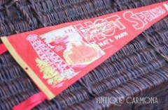 Souvenir Pennant for HOT SPRINGS ARK.
