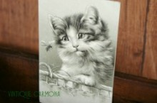 Postcard * Cat and Bug *