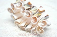 Sea Shell Stretch Bracelet