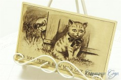Postcard * Cat and Dog  *