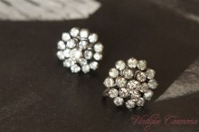 Clear Rhinestone Round Earrings