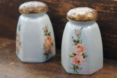 Hand painted Ceramic Salt & Pepper Shaker Set