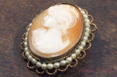Shell Cameo Brooch/Pendant Top