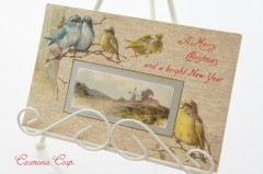 Postcard * Birds and Landscape *