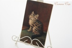Postcard * Persian cat *