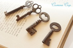 Skeleton Key 4pcs Set