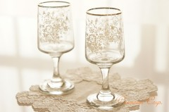 Flower Print Mini Glass 2pcs Set